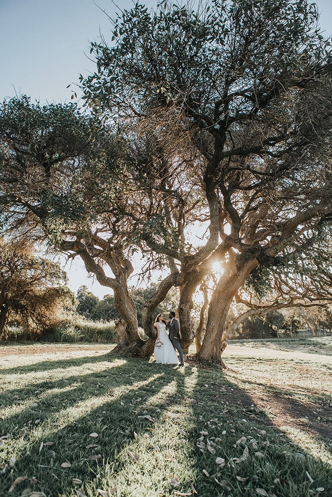Bride and Groom under tree on the Gold Coast Australia