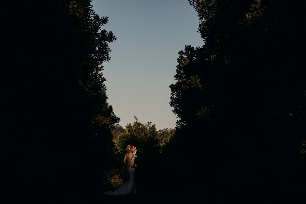 Unposed bride and groom in a macadamia grove in Newrybar, Byron Bay wedding by Cloud Catcher Studio